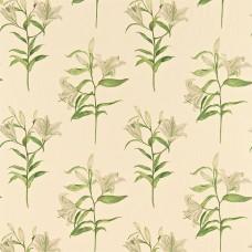Ткань Sanderson LUCIA DAPGLP201