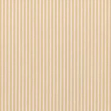 Ткань Sanderson TIGER STRIPE DMUSTS203